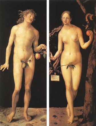 Facts about Albrecht Durer - Adam and Eve
