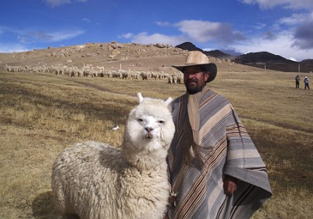 Facts about alpacas - Bolivian man with his alpaca