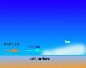 The process of Advection fog