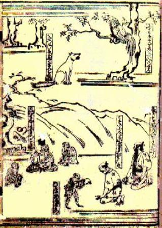 Facts about Aesop - Tsukuba Isop
