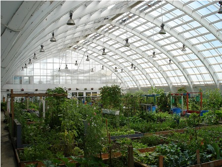 Facts about air - Greenhouse