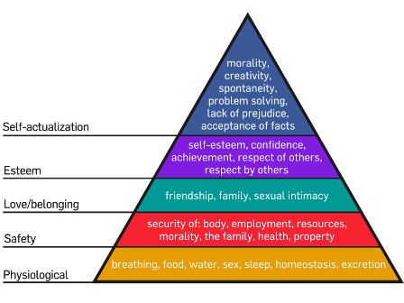 Facts about Abraham Maslow - Maslow's interpretation of hierarchy of needs
