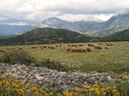 Facts about Albania - Countryside Landscape