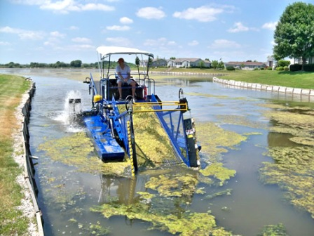 Facts about algae - Harvesting algae