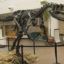 10 Interesting Facts about Allosaurus