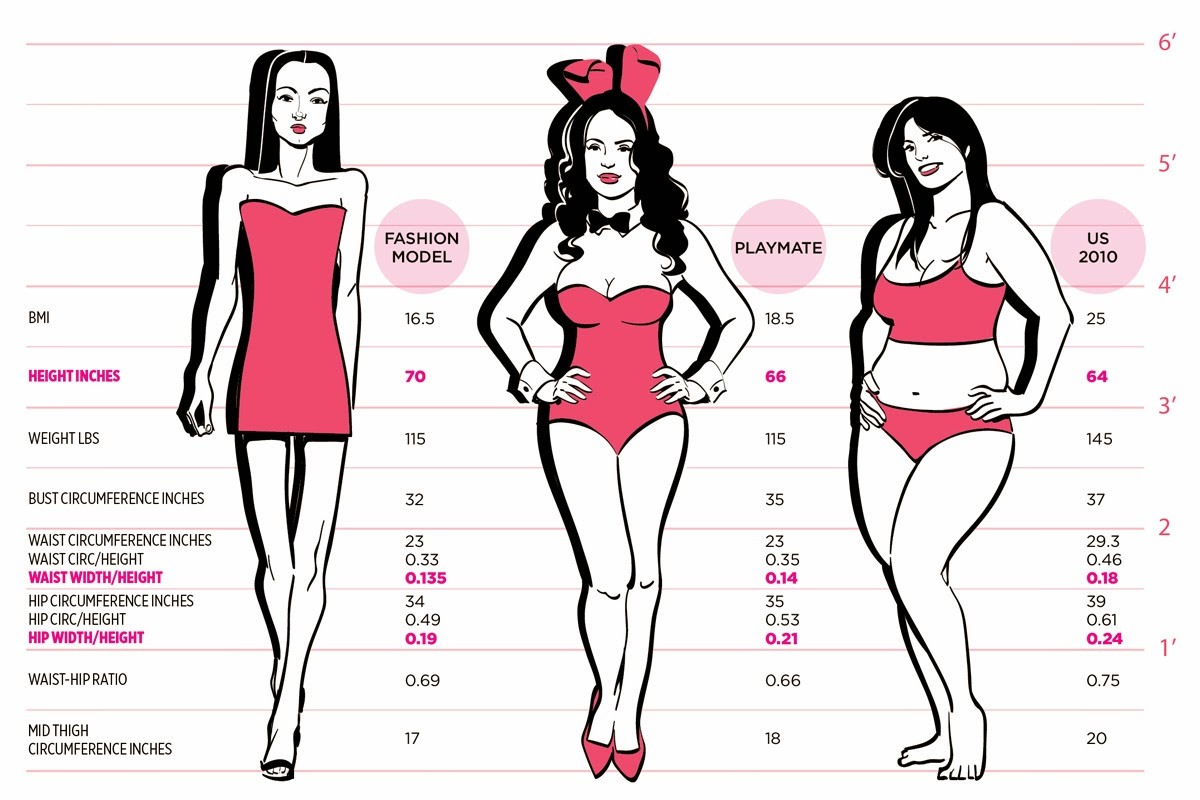 Ideal Female Body 10 Interesting Facts a...