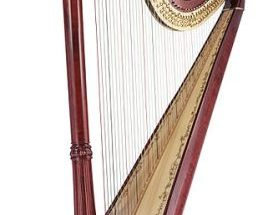 10 Interesting Facts about Harps