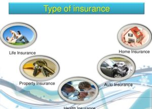 10 Interesting Facts about Insurance