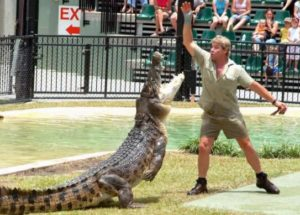 10 Interesting Facts about Steve Irwin