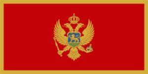 The Montenegro's Flag