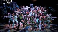 10 Interesting Facts about Cats the Musical